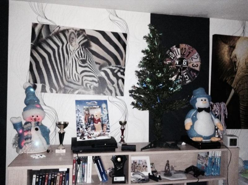 Votre arbre de Noël! 10841510