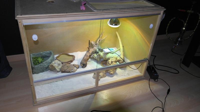 terrarium vitre sur mesure 00310