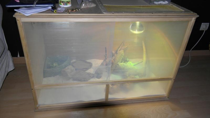 terrarium vitre sur mesure 00510