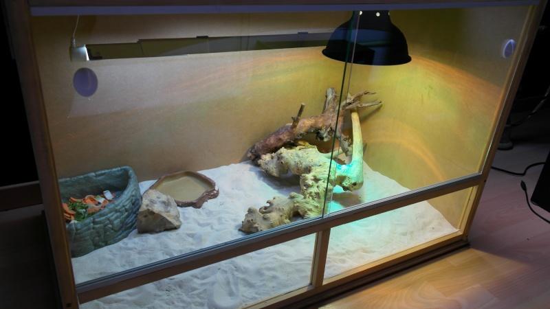 terrarium vitre sur mesure 00810