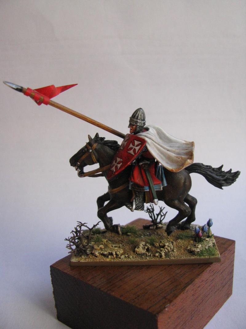 chevalier croisé 28 mm Img_6111