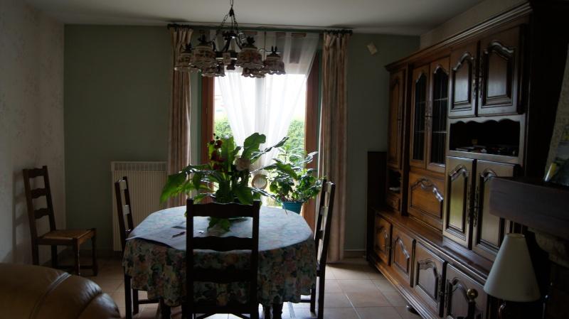 conseils pour déco salon salle à manger et cuisine Dsc01814