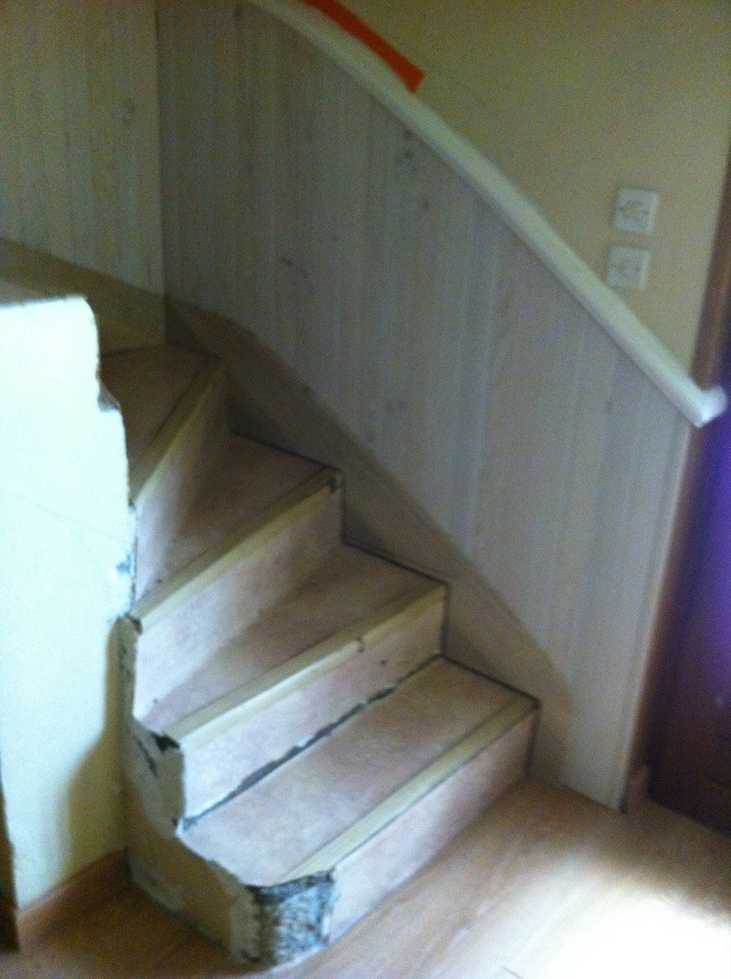 Habillage d'un escalier en beton Image18