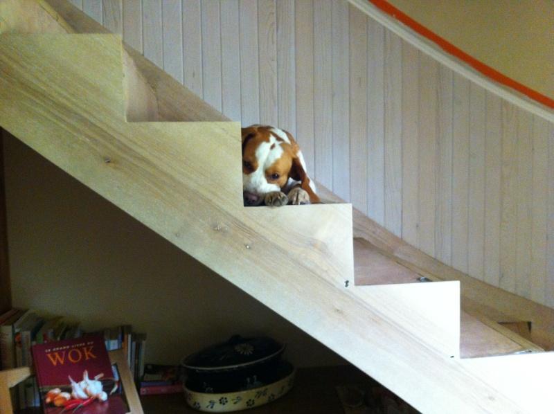 Habillage d'un escalier en beton - Page 2 Image38