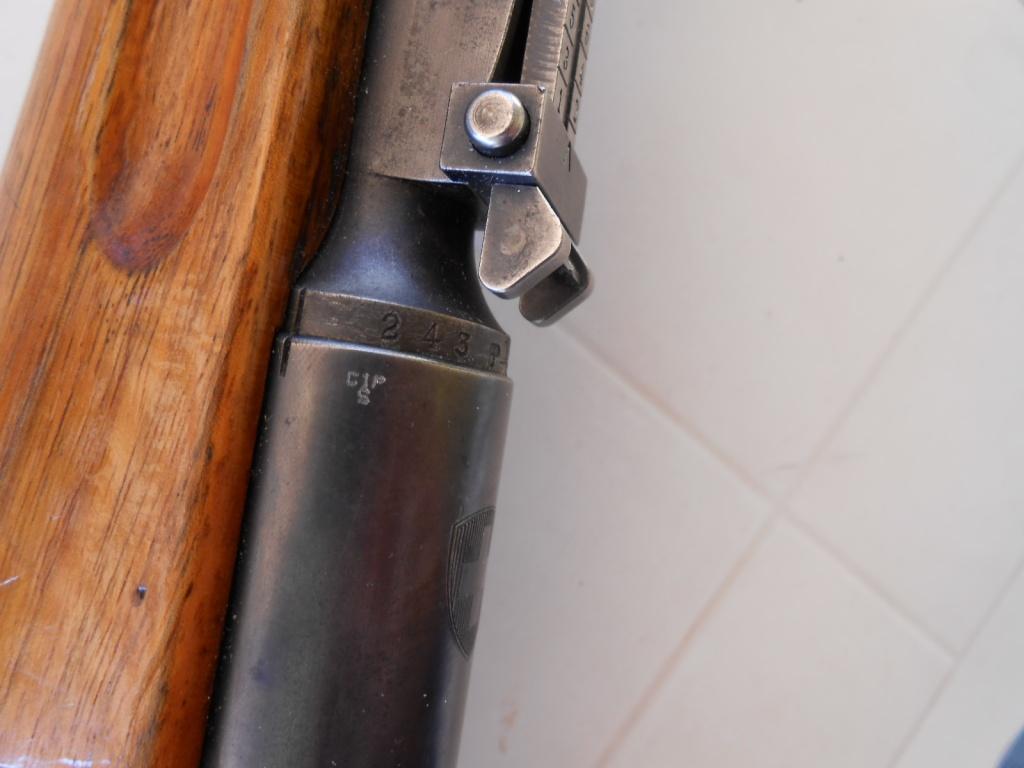 Petit Suisse - Custom sur Mousqueton K31. Dscn0115