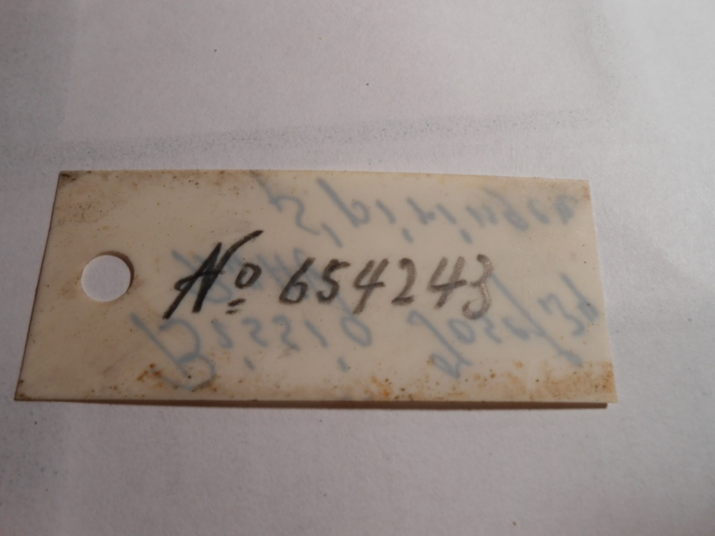 Petit Suisse - Custom sur Mousqueton K31. Dscn0132
