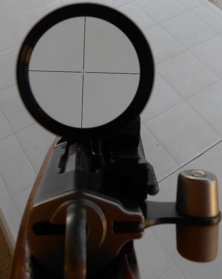 Petit Suisse - Custom sur Mousqueton K31. Dscn0137