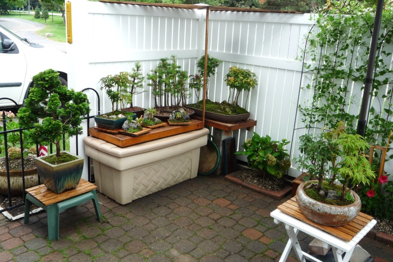 Show us your bench(s) - Page 3 Patio_11