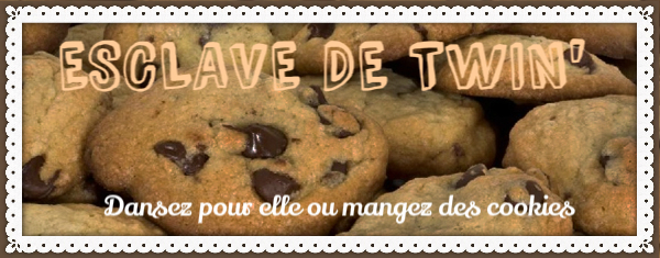 Choisis Ton Camp! Cookie11