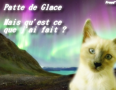 Patte de Glace [Codes and it's ok <3] 3810