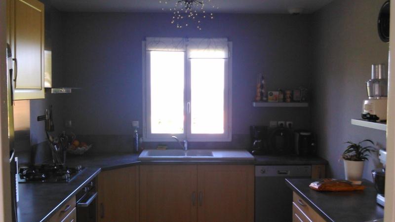 Quelle couleur pour les murs de ma cuisine? Dsc_0811