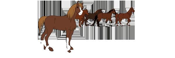 Horse RPG Sans_t11