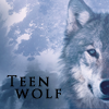Teen Wolf RPG Confirmación 100x1010