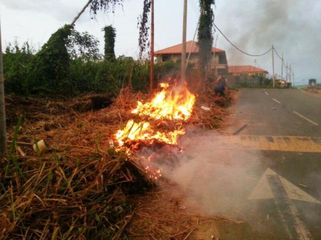 Gotong-royong membakar rumput/tumbuhan mati utk tapak pondok SRS -1/10/2014 Photo_94