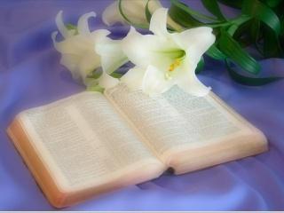 Chrétien, n'oublie pas que cette Terre n'est pas la tienne Bible10