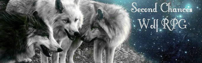 Second Chances! Wolf RPG Banner10