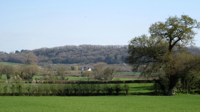 Ma Grande Bretagne : Somerset : suite et fin . - Page 2 Img_2012
