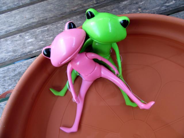 [Wonder Frogs] Roméo et Juliette :défilé de mode Img_9211
