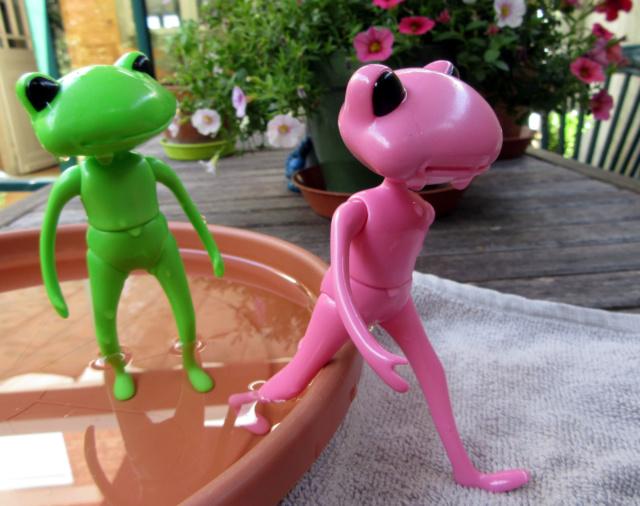 [Wonder Frogs] Roméo et Juliette :défilé de mode Img_9217