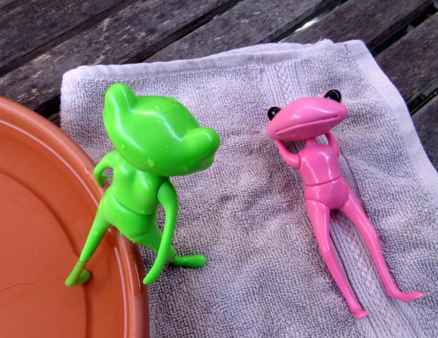 [Wonder Frogs] Roméo et Juliette :défilé de mode Img_9218