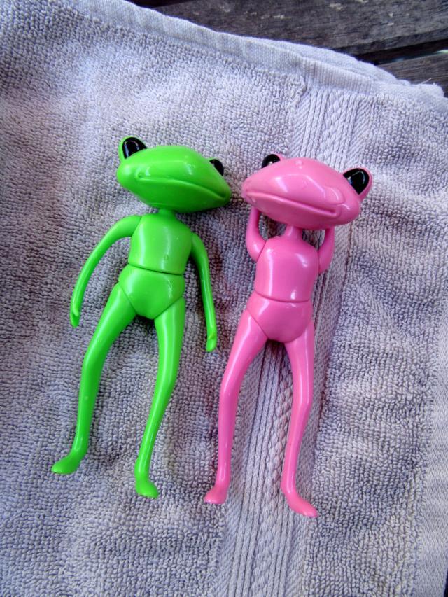[Wonder Frogs] Roméo et Juliette :défilé de mode Img_9219