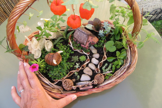 Jardin miniature Img_9810