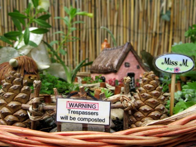 Jardin miniature Img_9815