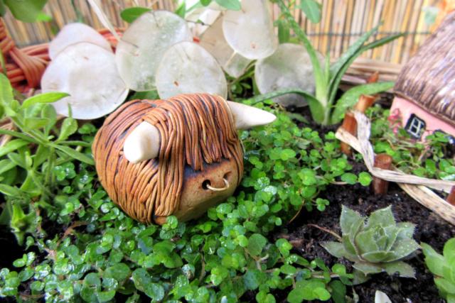 Jardin miniature Img_9818