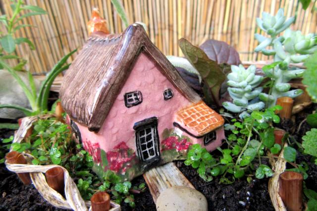 Jardin miniature Img_9819