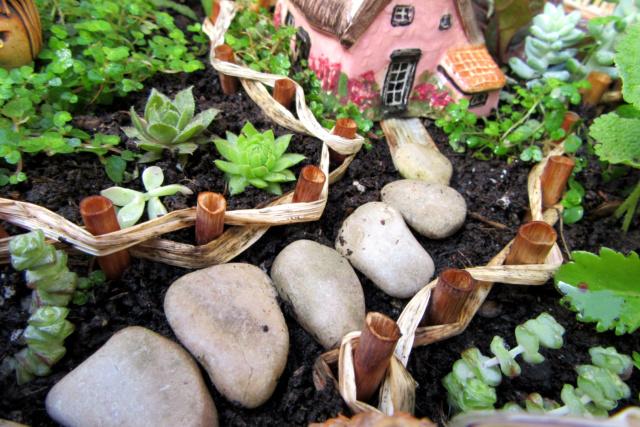 Jardin miniature Img_9820