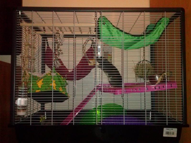 La cage de Snoop et Rapido Cam00212