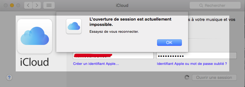 [PRESQUE RESOLU] Installation Yosemite 10.10 beta 4 fonctionnelle mais sans App Store ni iCloud... - Page 4 Captur11
