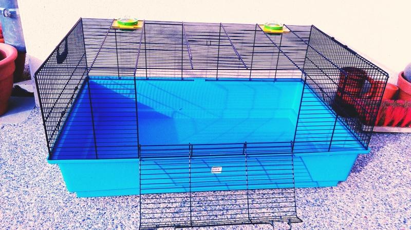 VENDUE Cage Savic pour hamster ou cage de quarantaine Imag1010