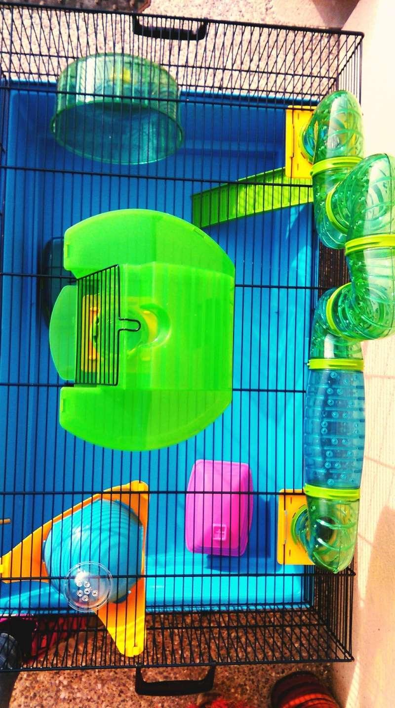 VENDUE Cage Savic pour hamster ou cage de quarantaine Imag1012