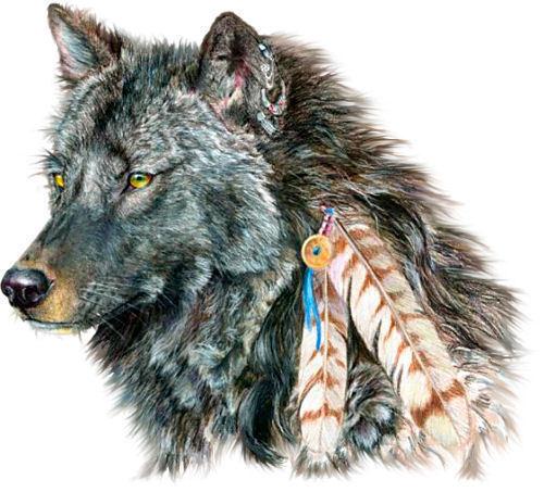 Tala, l'esprit du loup 15843010