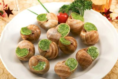 Escargot petit aqua | aqua compartimenté Escarg10