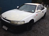 AE100/101 Levin 1992 Project 10685510
