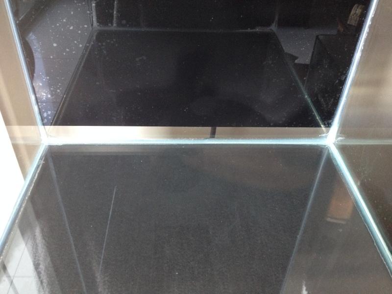 Nano récif de 30 L  Photo_34