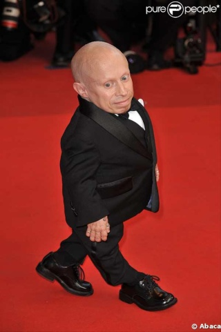 Verne Troyer net worth 2019, salary and wealth 21928710
