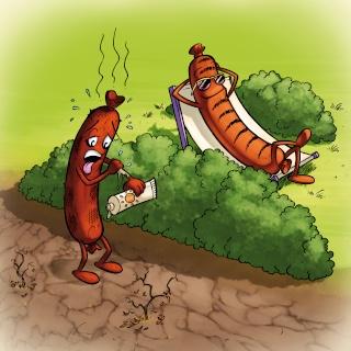Le livre jeunesse des inventifs Barbec10