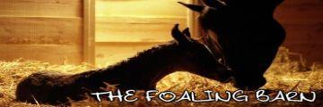 The Foaling Barn