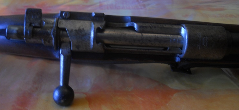 Mauser GEW98 Dscn5111