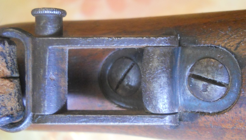 Mauser GEW98 Dscn5127