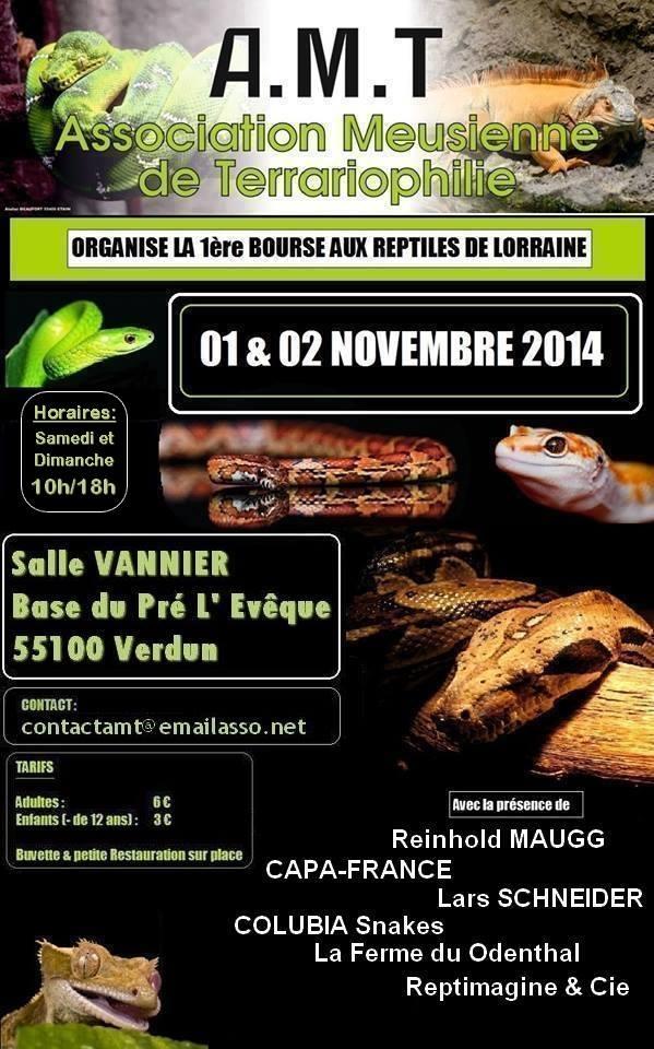 Reptil'Expo à Verdun 10592610