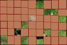 l'animal du petit loulou - 31 octobre trouvé par ginto et martin - Page 2 Etoile24