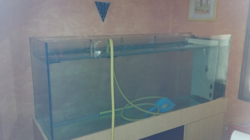 640 litres asiatique avec systéme aquaponie 00110