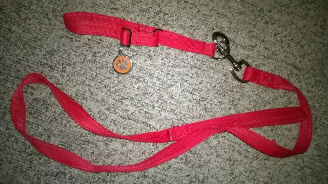 Grif's Scrapbook Collar10