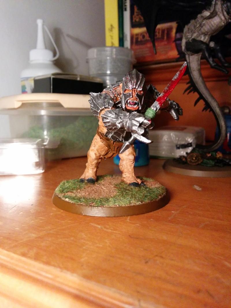 Cheff Troll du Mordor - Elessar Img_2010