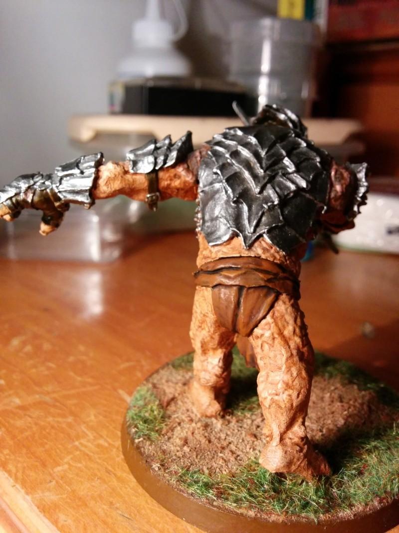 Cheff Troll du Mordor - Elessar Img_2014