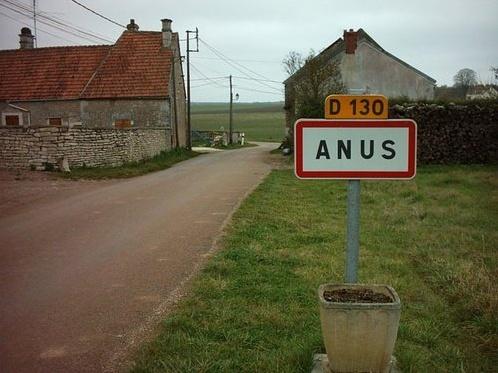 Presentation Anus10